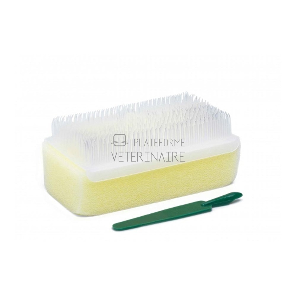 BROSSE A ONGLES CHIRURGICALE SECHE STERILE (X 25)