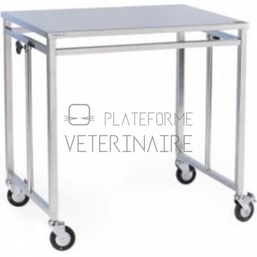 TABLE PONT INOX AVEC ROUES A FREIN